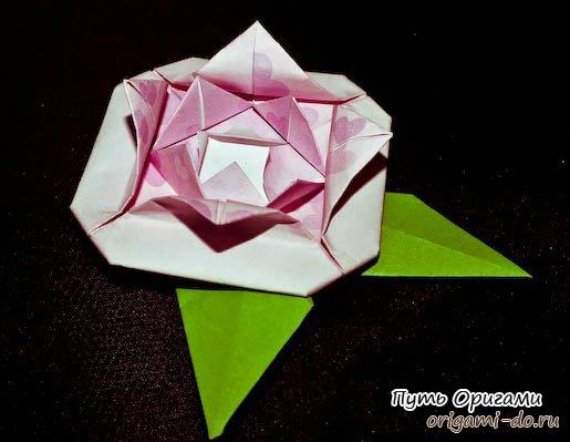 Как сделать розу из бумаги с лепестками