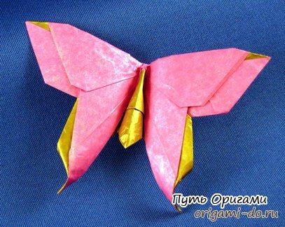 Оригами схема красивой бабочки