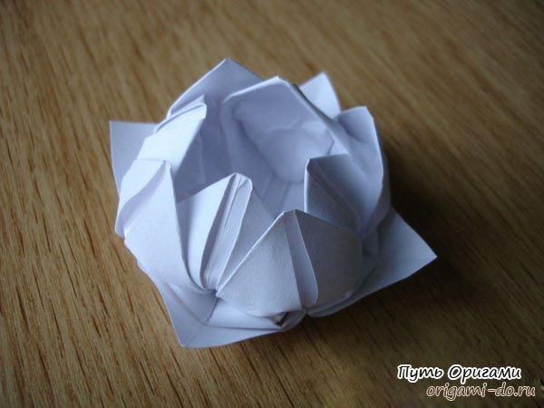 122Модель цветка  из бумаги