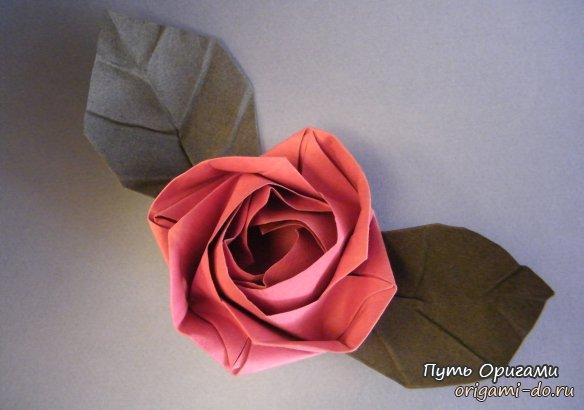 Evi Rose – красивая оригами