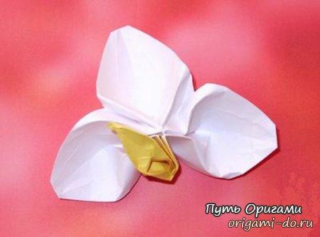 Простой, нежный цветок оригами