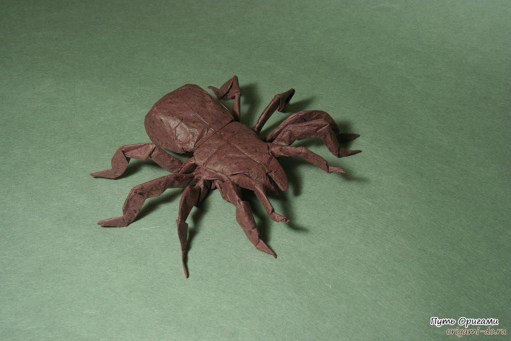 Оригами тарантул по схеме