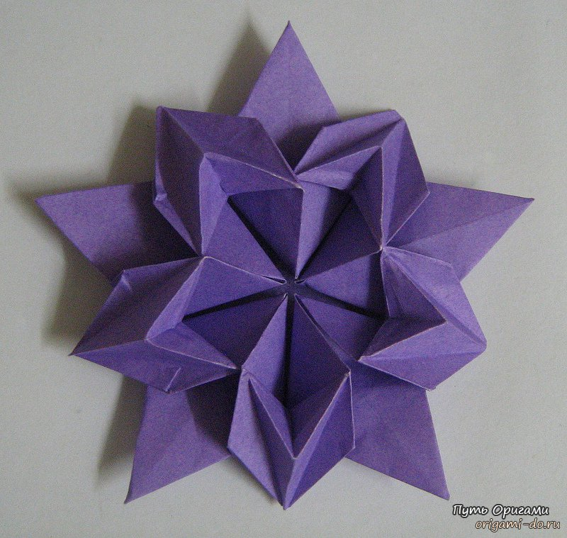 Цветок сакуры по схеме Дэвида